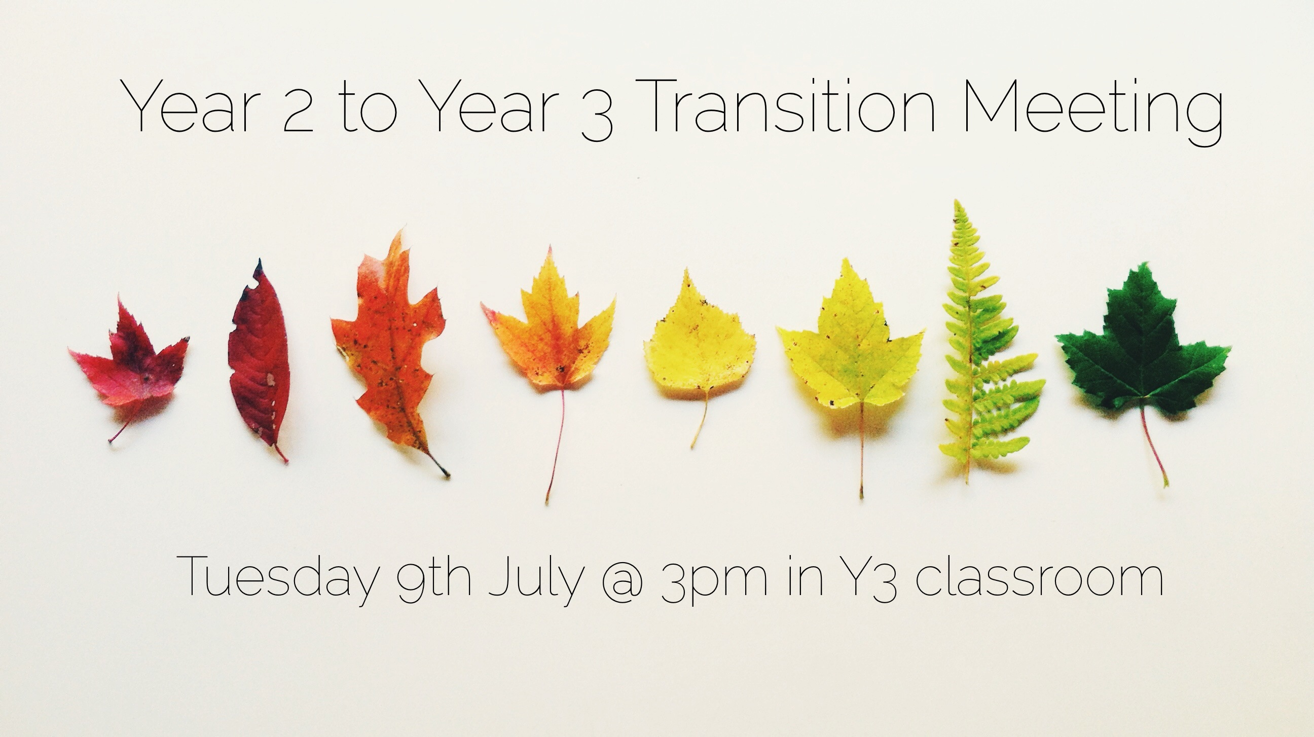 Year 2 to Year 3 Transition Meeting